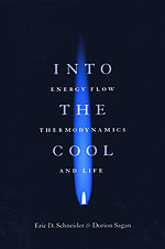 Into the Cool: Energy Flow, Thermodynamics, and Life