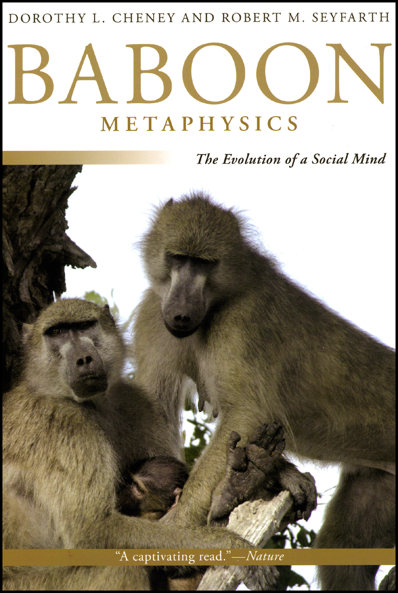 Baboons in mind