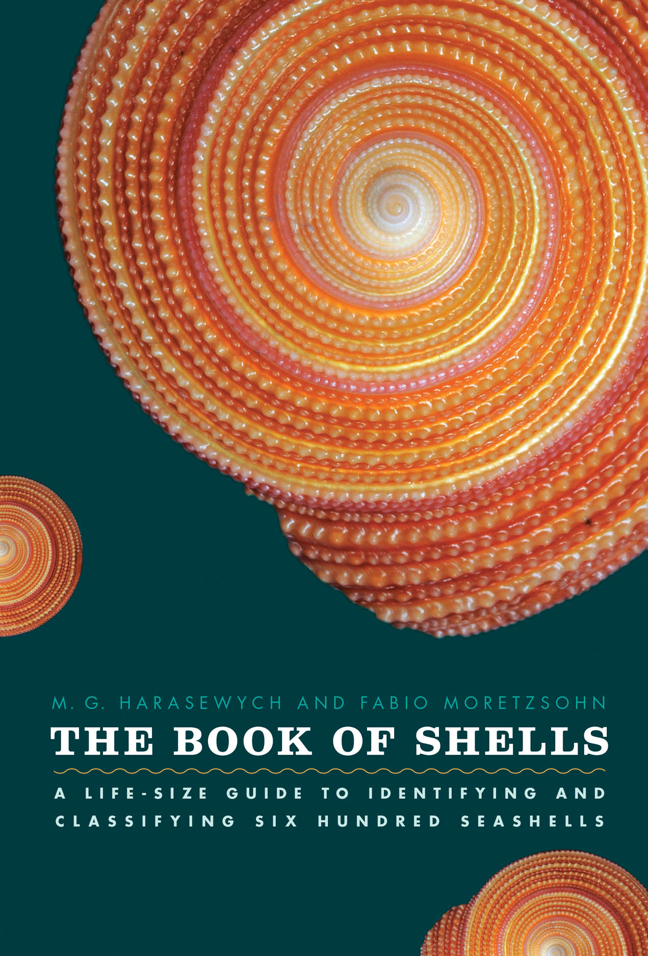 The Book of Shells in the NYT