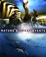 Press Release: Bass, Nature's Great Events