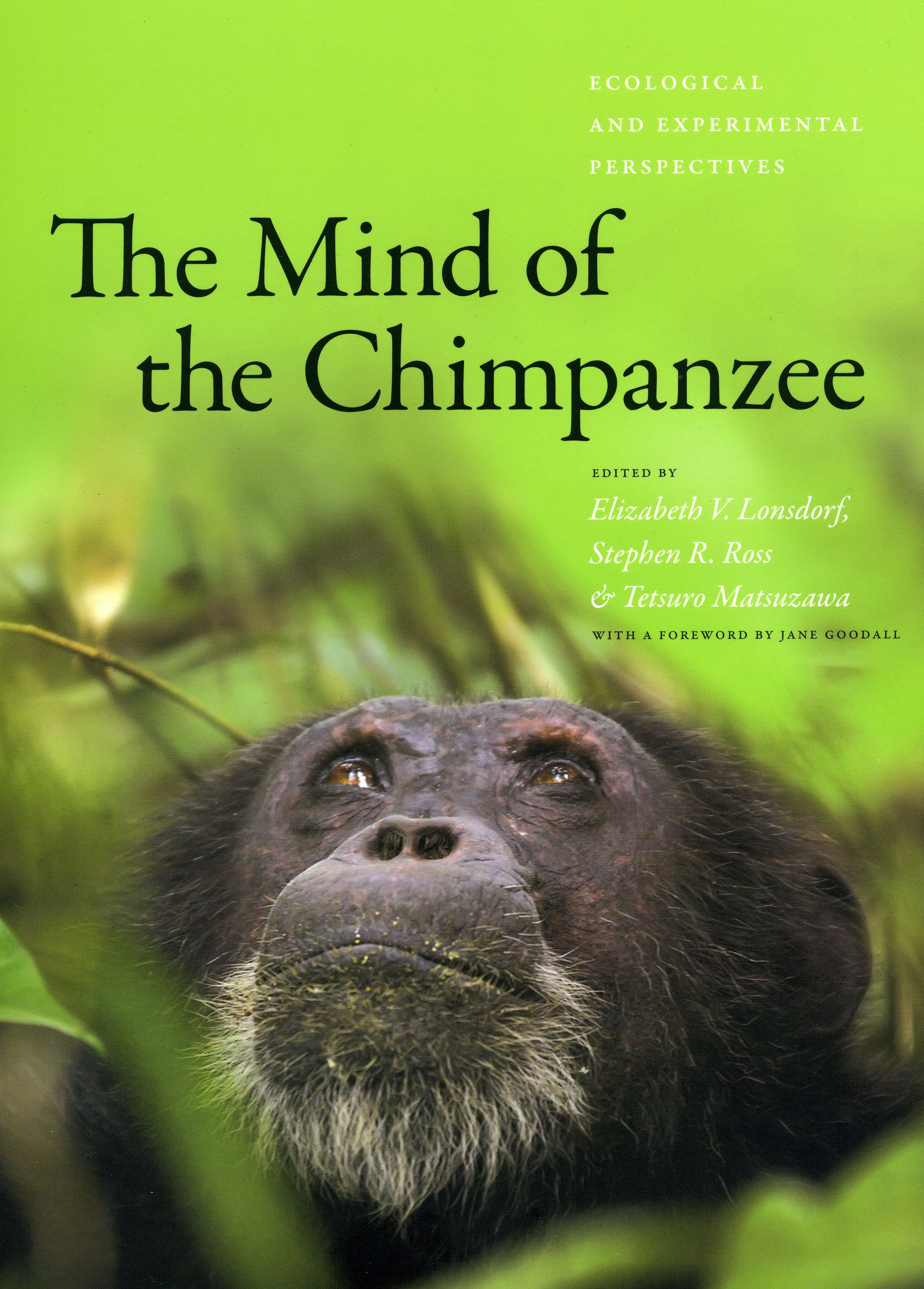 Chimpanzees Do Not Make Good Pets