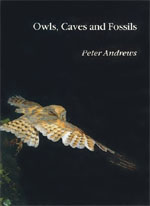 Owls, Caves and Fossils