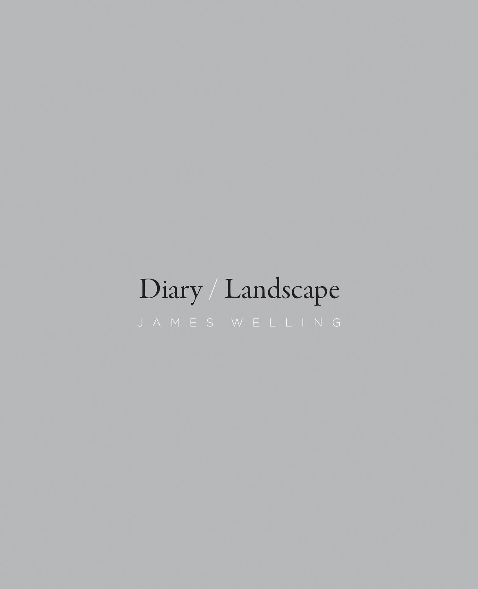 Diary/Landscape