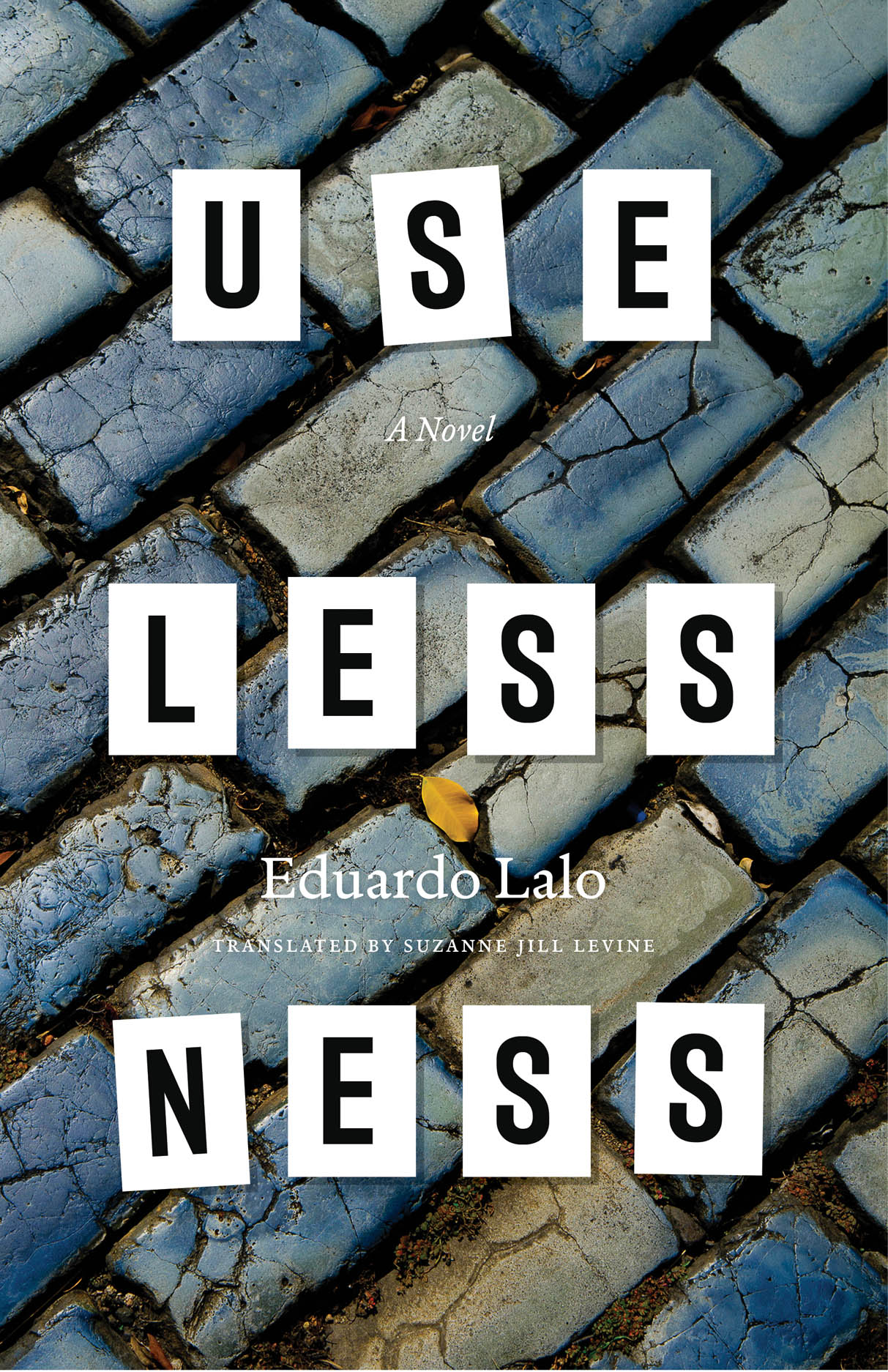 Uselessness: A Novel