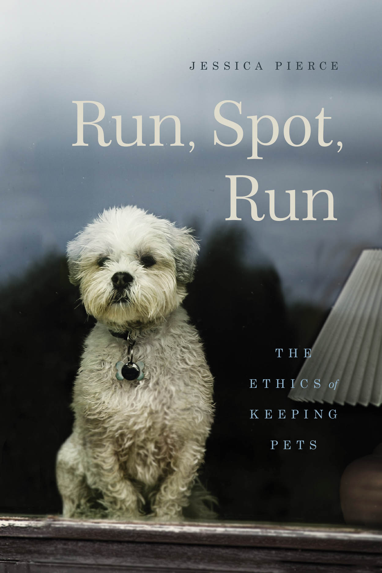Cover image for Run, Spot, Run by Jessica Pierce