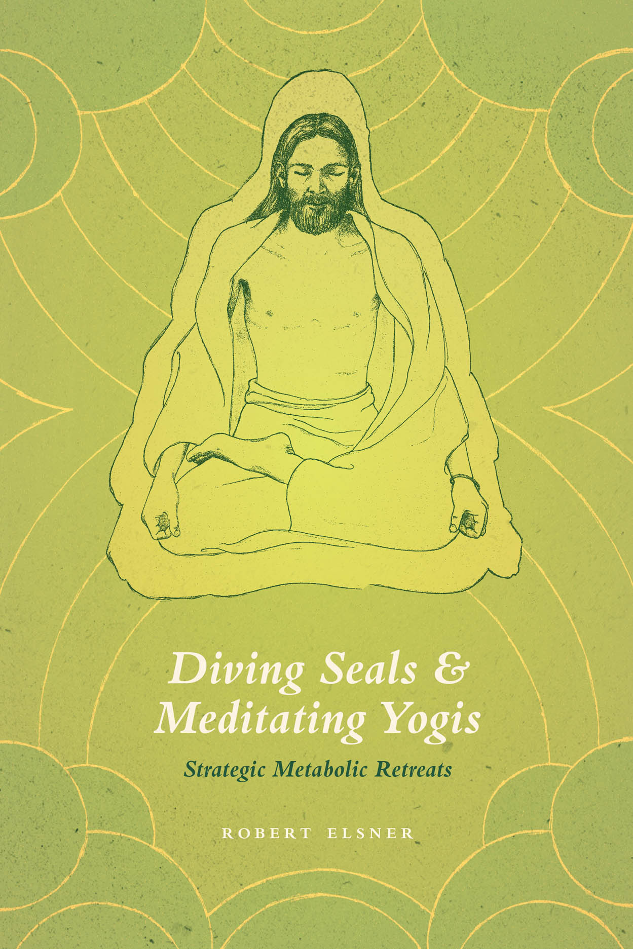 Diving Seals and Meditating Yogis