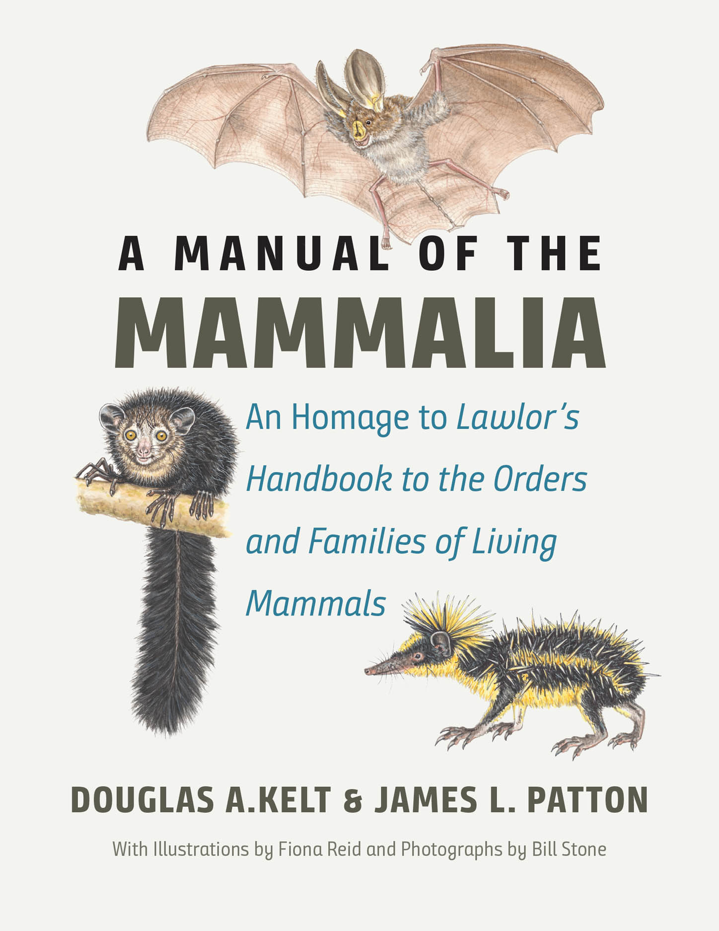 A Manual of the Mammalia