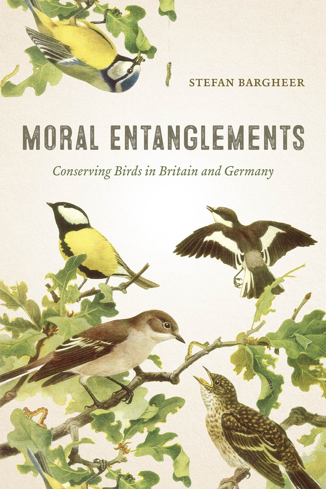 Moral Entanglements: Conserving Birds in Britain and Germany