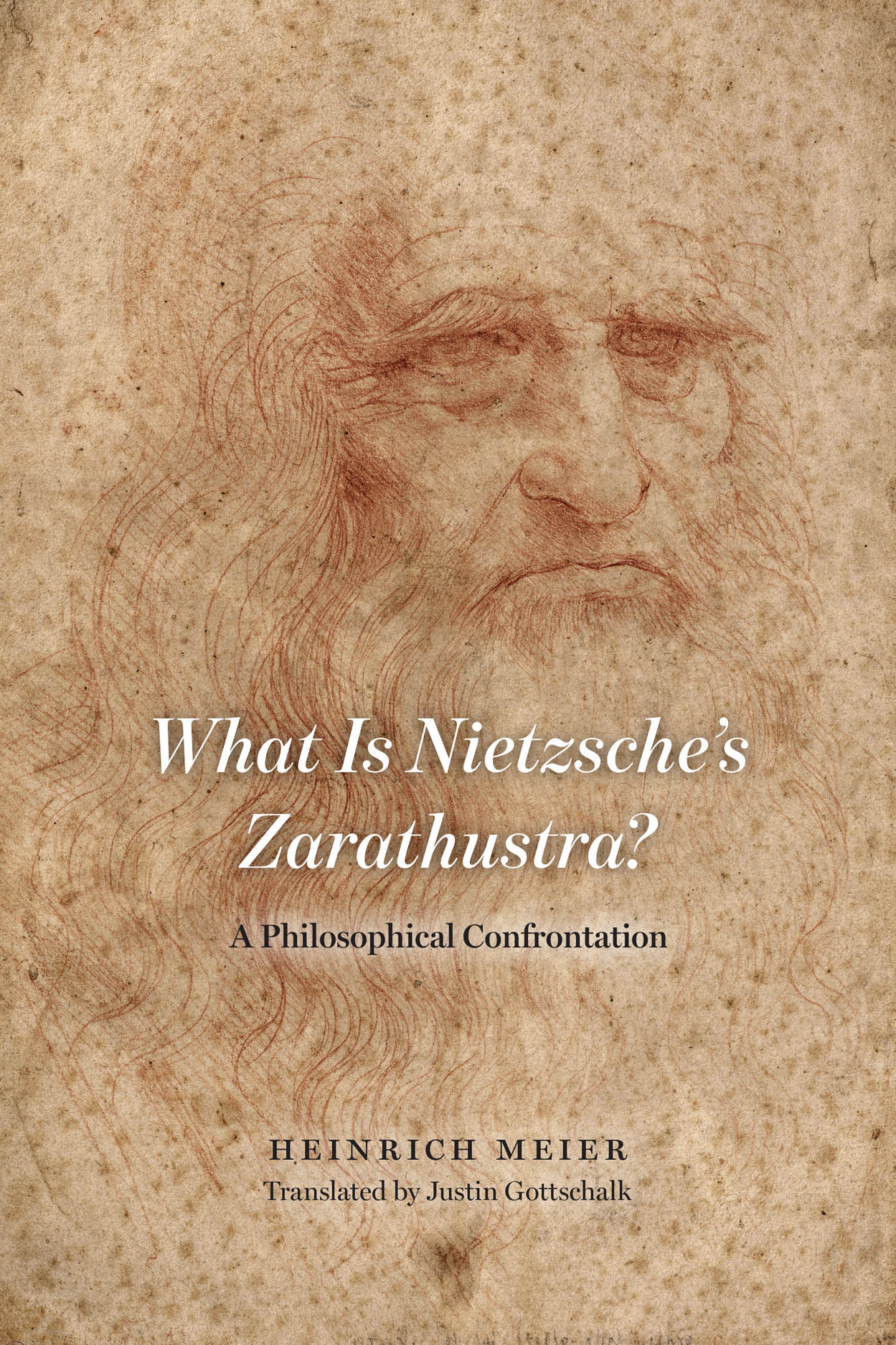 What is Nietzsche's Zarathustra?: A Philosophical Confrontation