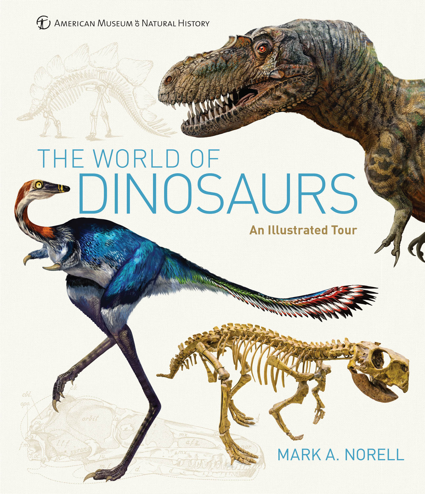 The World of Dinosaurs: An Illustrated Tour