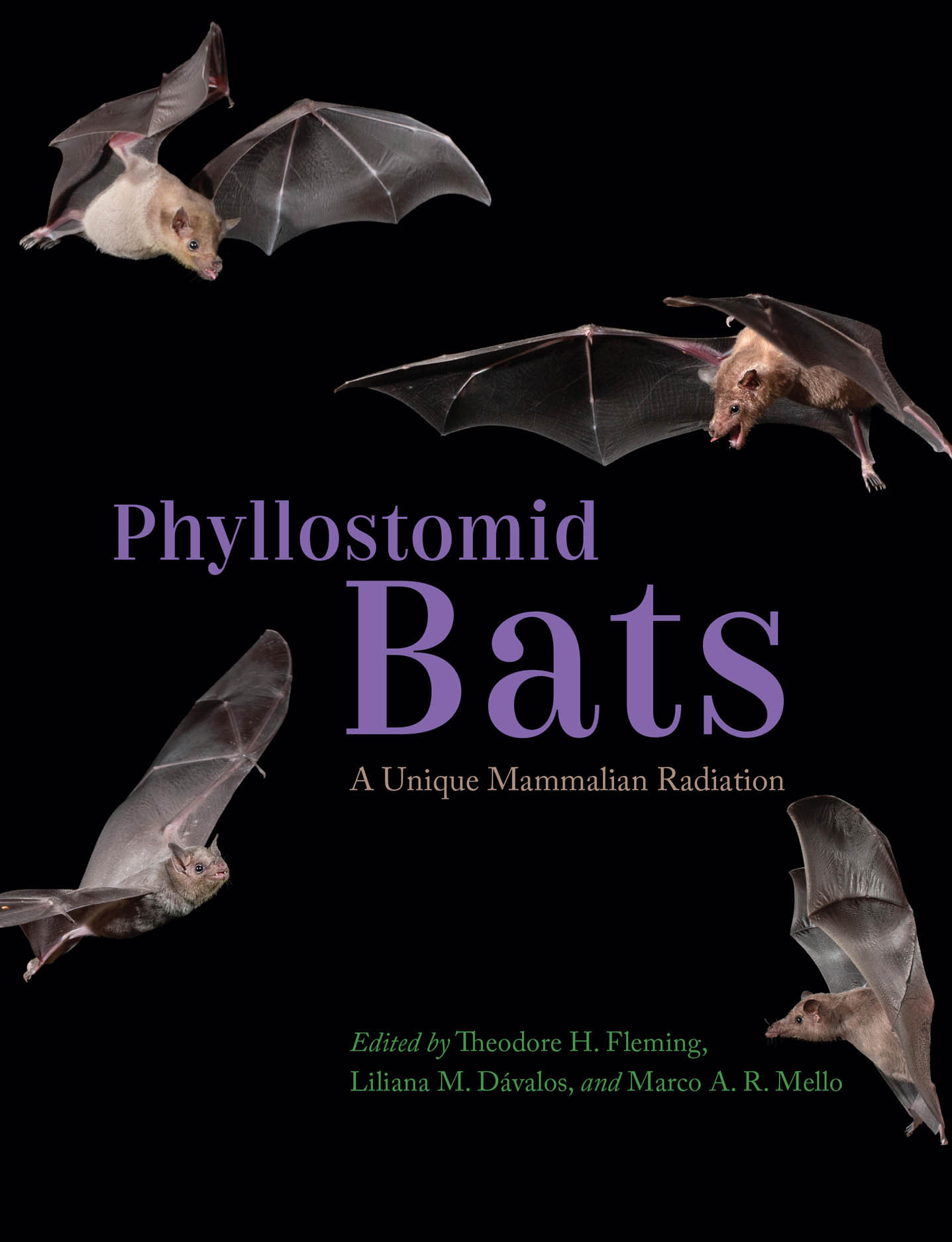 Phyllostomid Bats: A Unique Mammalian Radiation