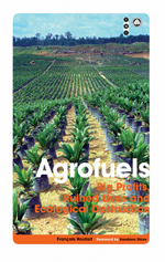 Agrofuels: Big Profits, Ruined Lives and Ecological Destruction