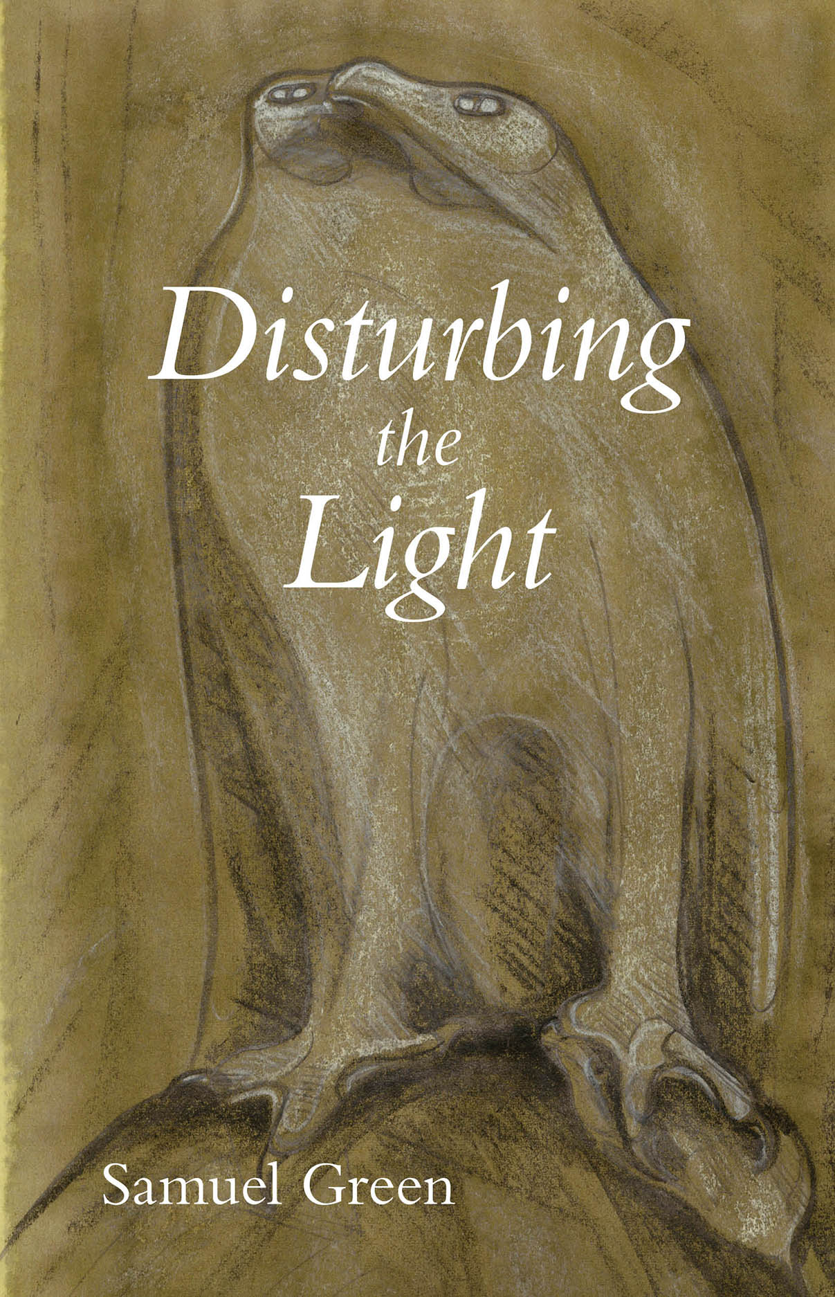 Disturbing the Light