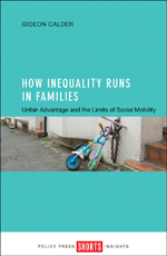 How Inequality Runs in Families