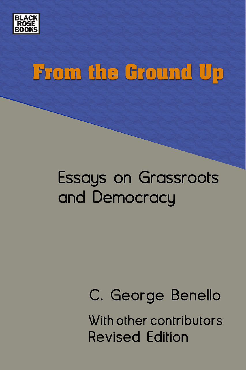 From the Ground Up: Essays on Grassroots Democracy