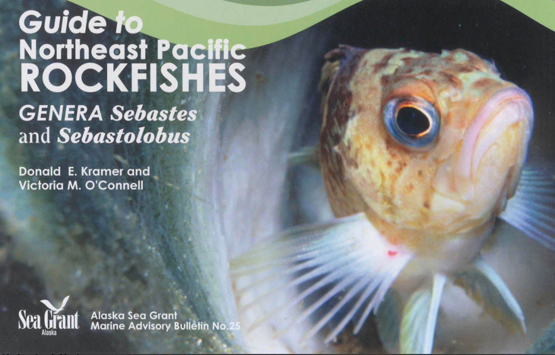 Guide to Northeast Pacific Rockfishes