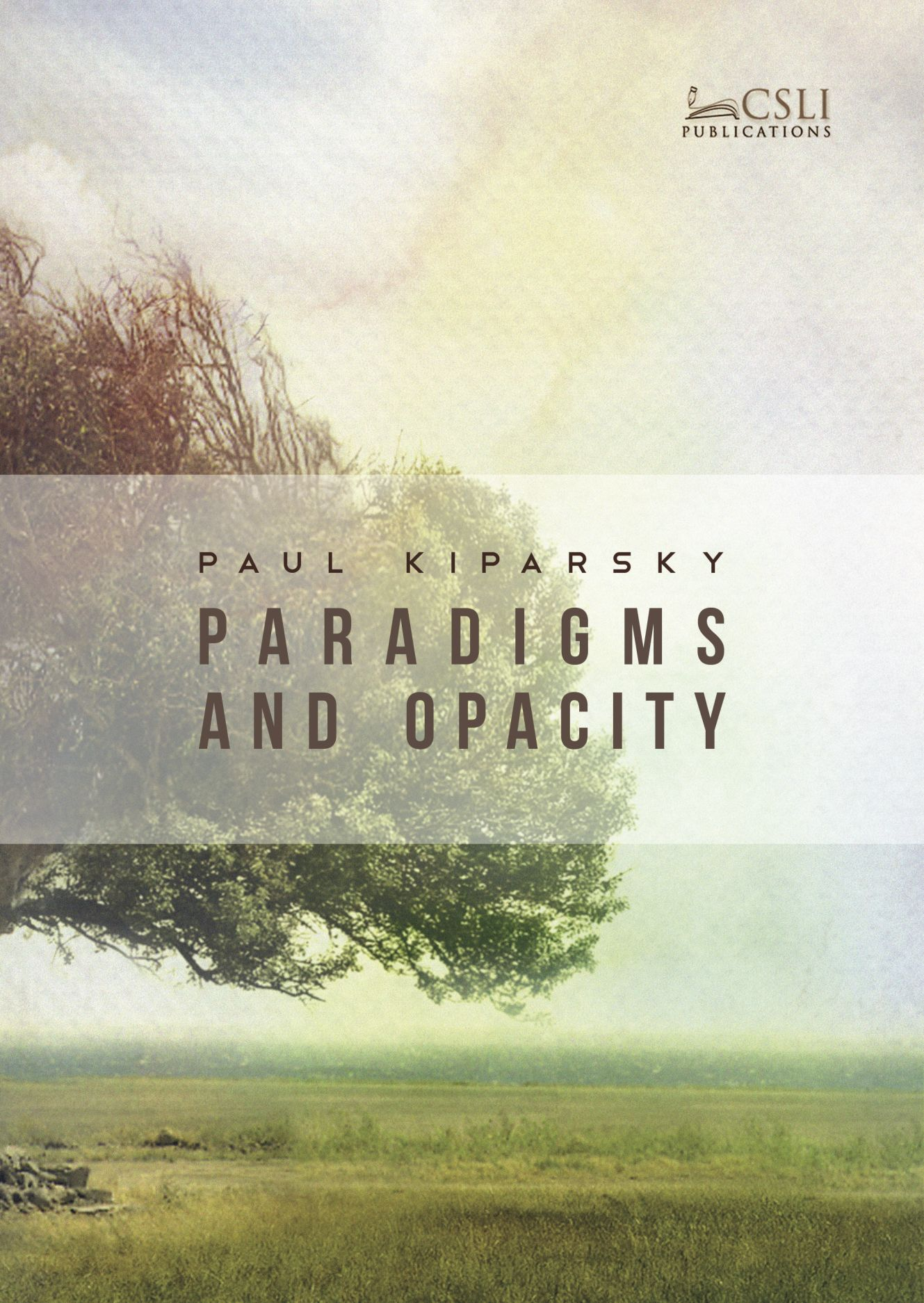 Paradigms and Opacity: Volume One