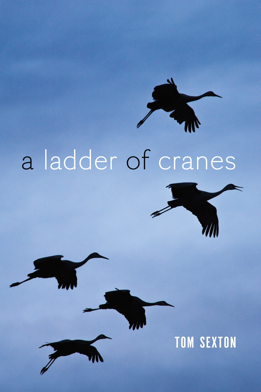 A Ladder of Cranes