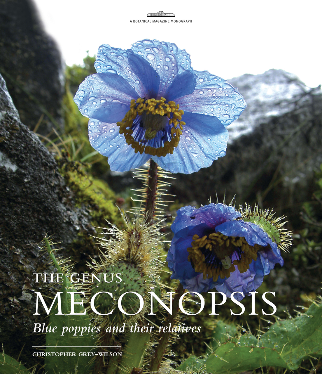The Genus Meconopsis: Blue poppies and their relatives