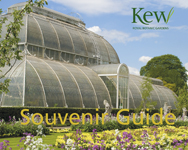 The Kew Souvenir Guide: Fourth Edition, Revised