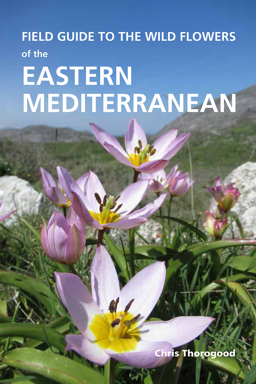 Field Guide to the Wild Flowers of the Eastern Mediterranean