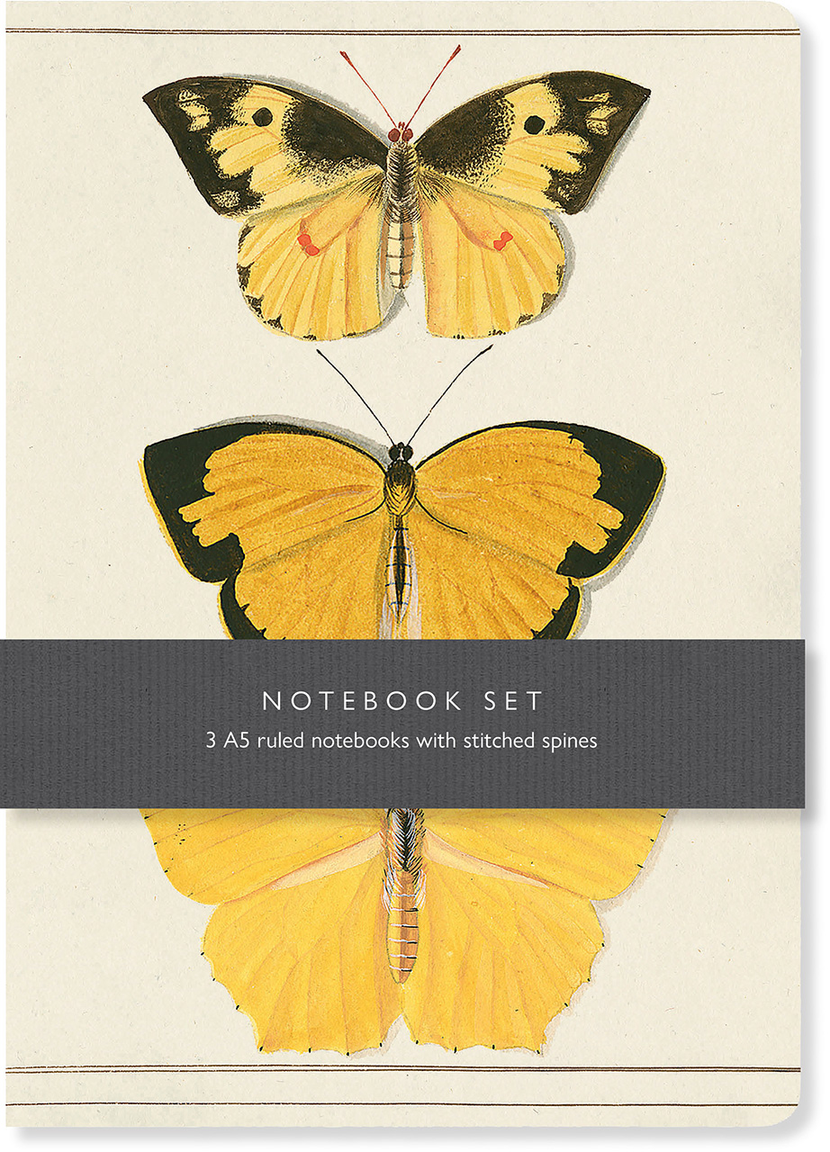 Butterfly Notebook Set: 3 A5 ruled notebooks with stitched spines