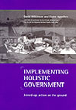 Implementing holistic government