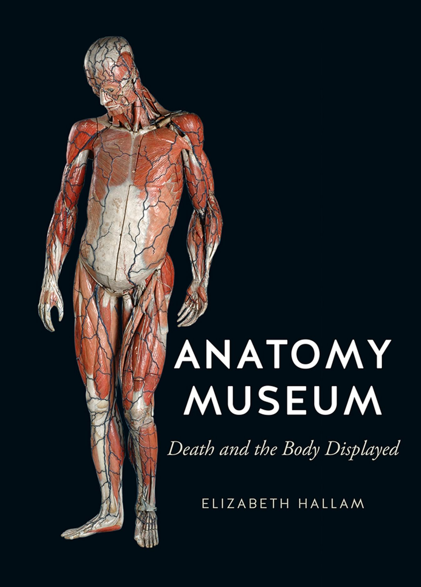 Anatomy Museum: Death and the Body Displayed