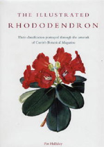 Illustrated Rhododendron