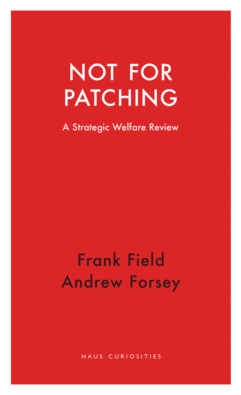 Not for Patching: A Strategic Welfare Review