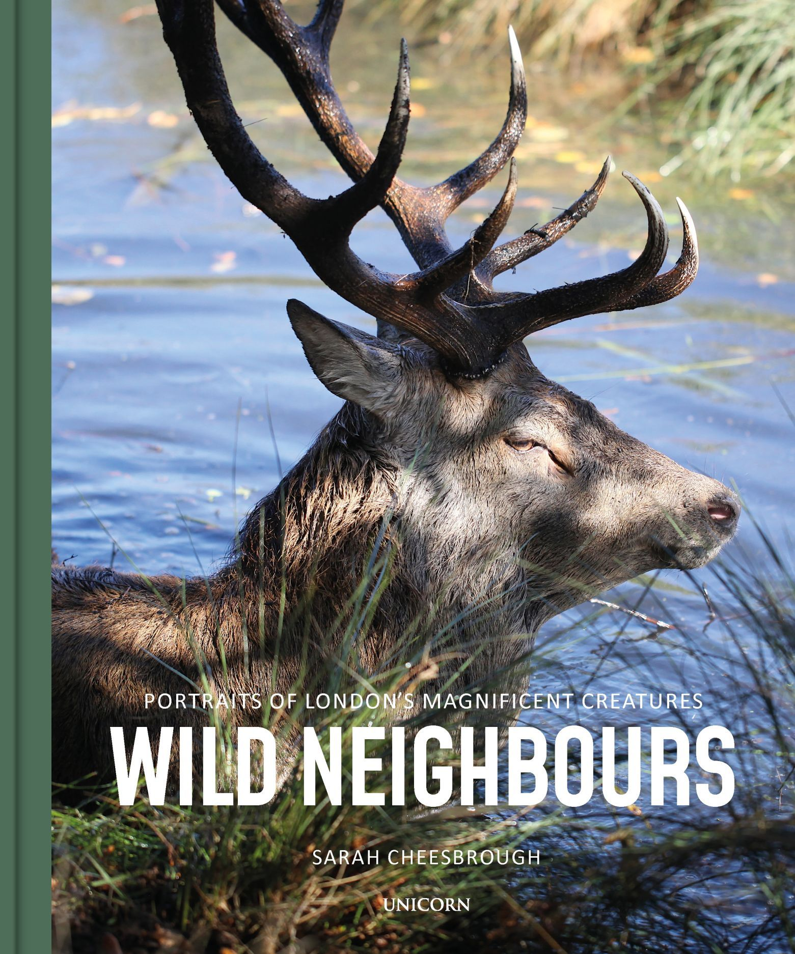 Wild Neighbours