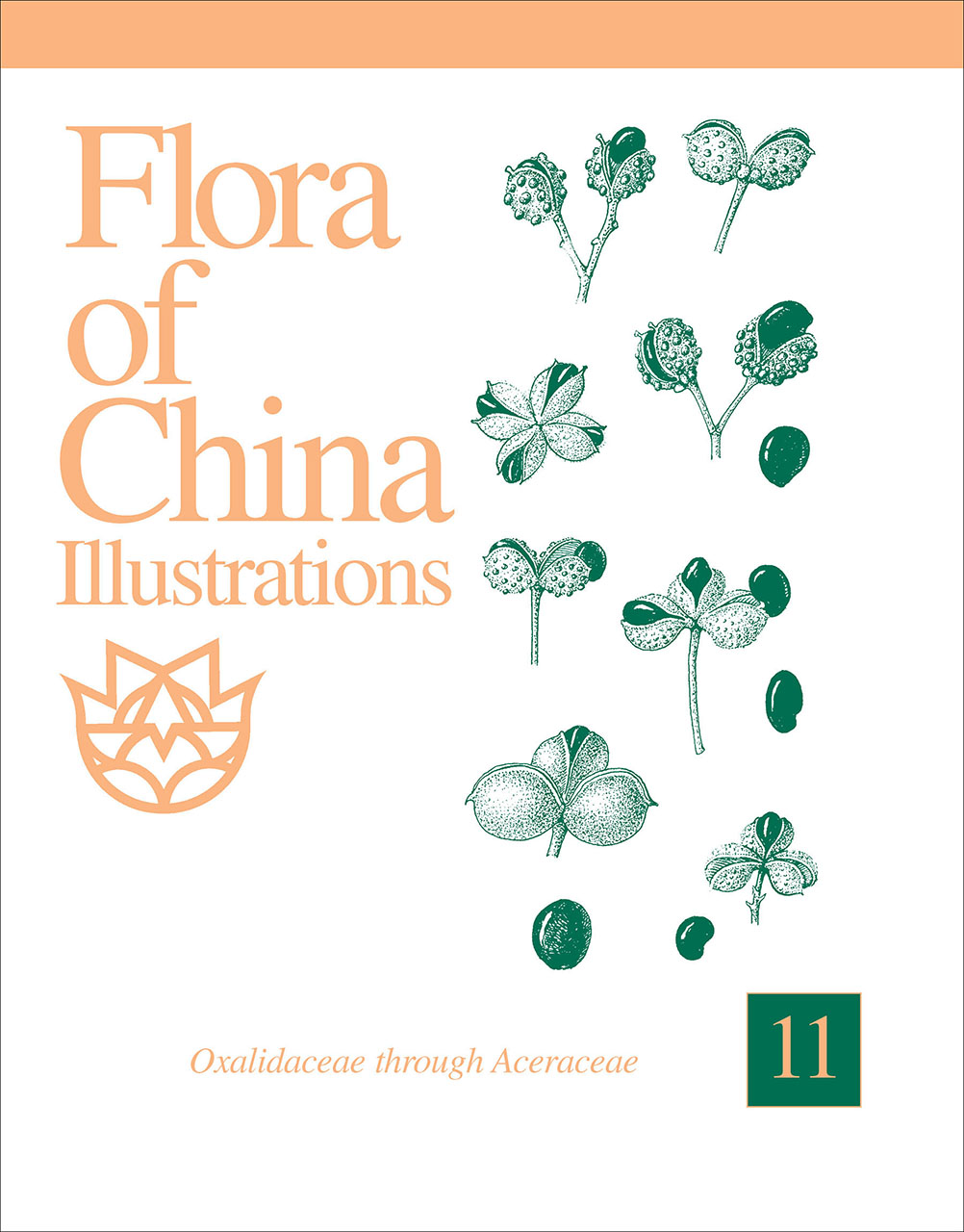 Flora of China Illustrations, Volume 11