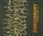 Chris Drury: Mushrooms|Clouds