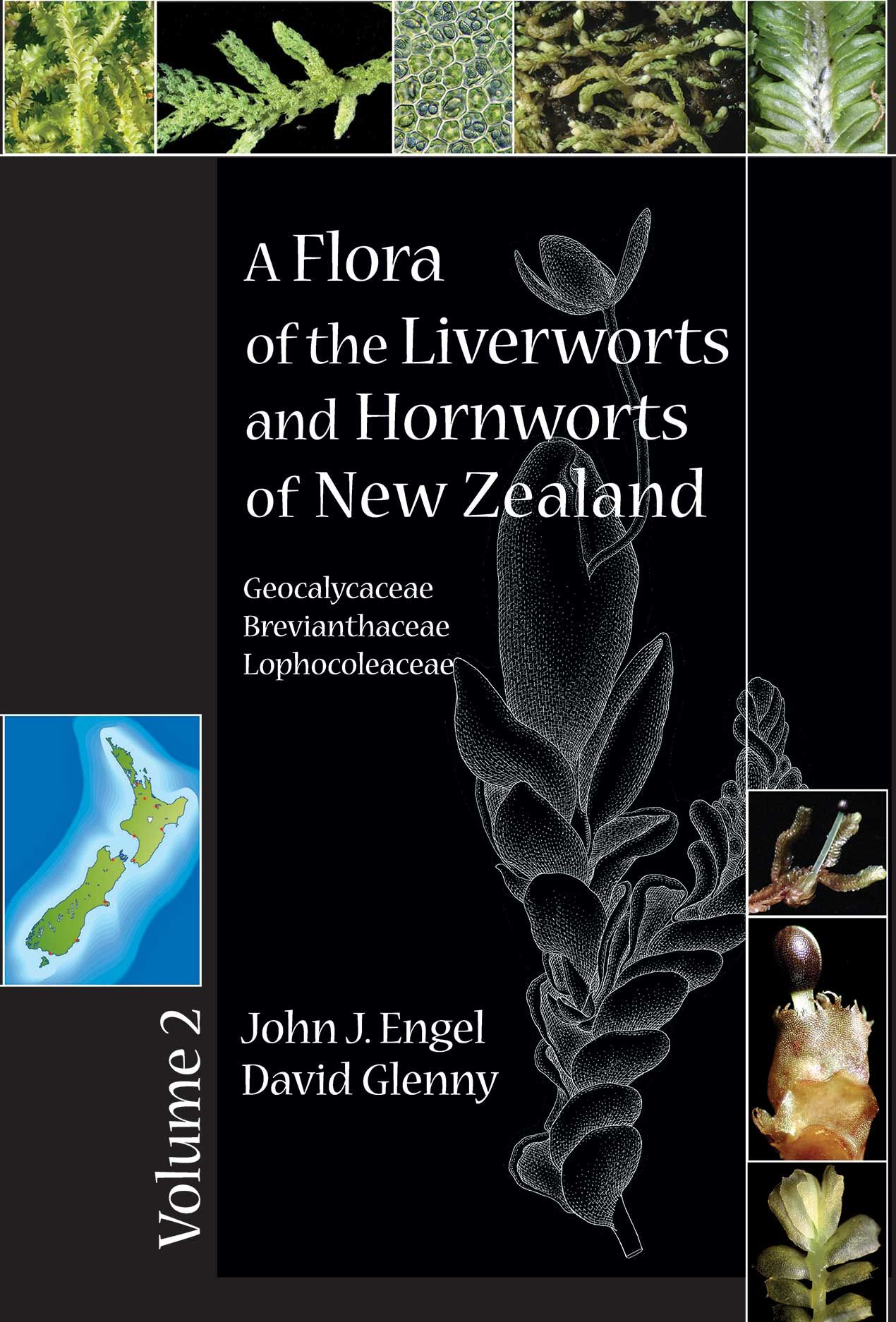 A Flora of the Liverworts and Hornworts of New Zealand: Volume 2