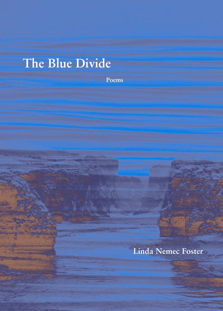 The Blue Divide: Poems