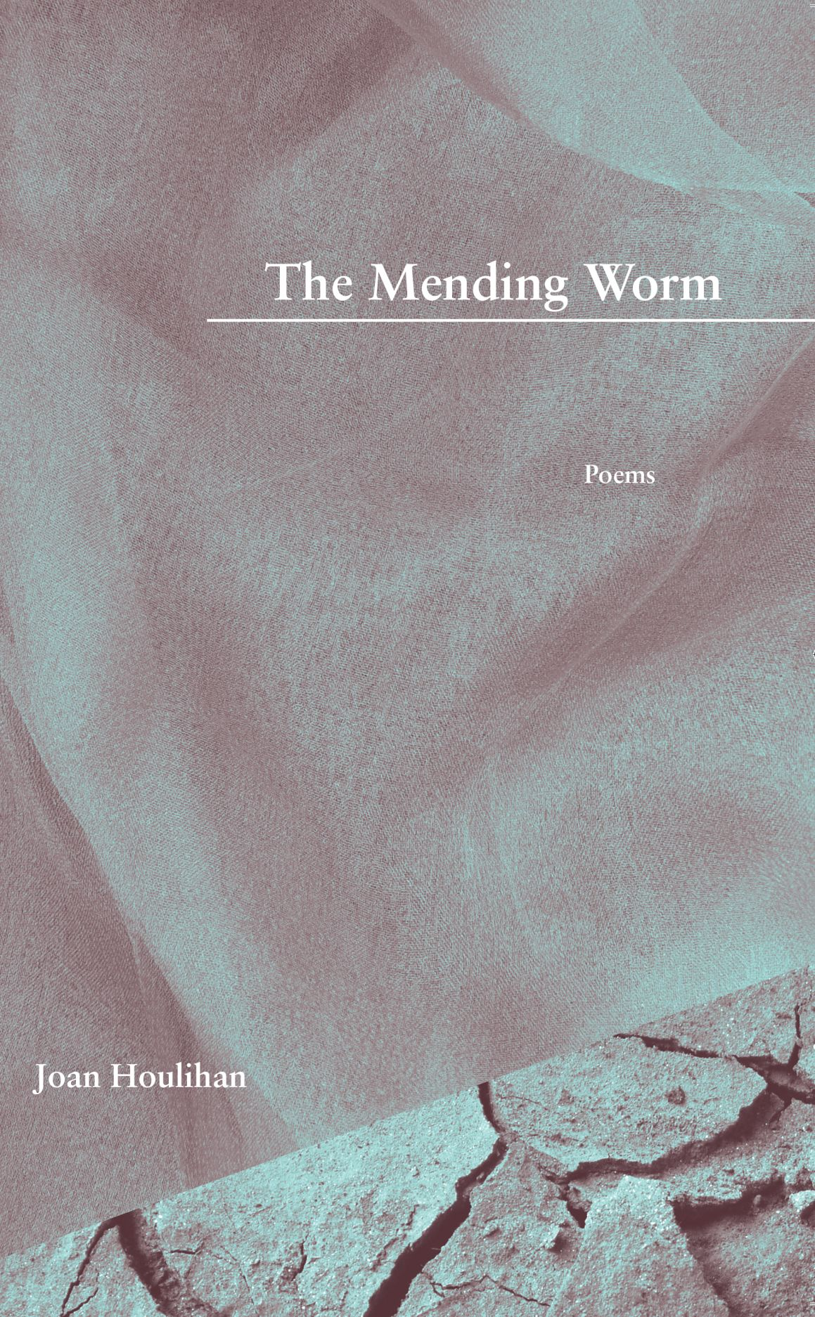 The Mending Worm