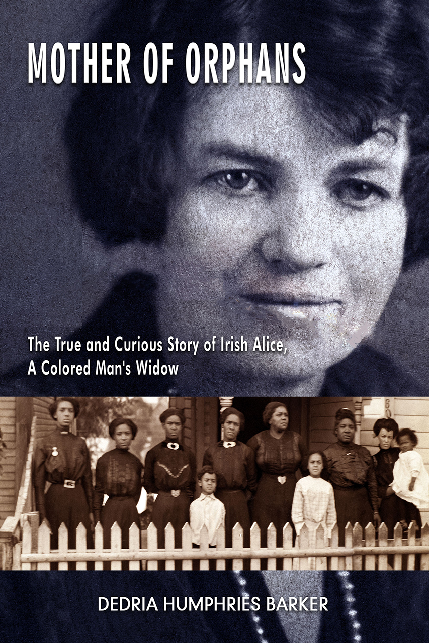 Mother of Orphans: The True and Curious Story of Irish Alice,  a Colored Man's Widow