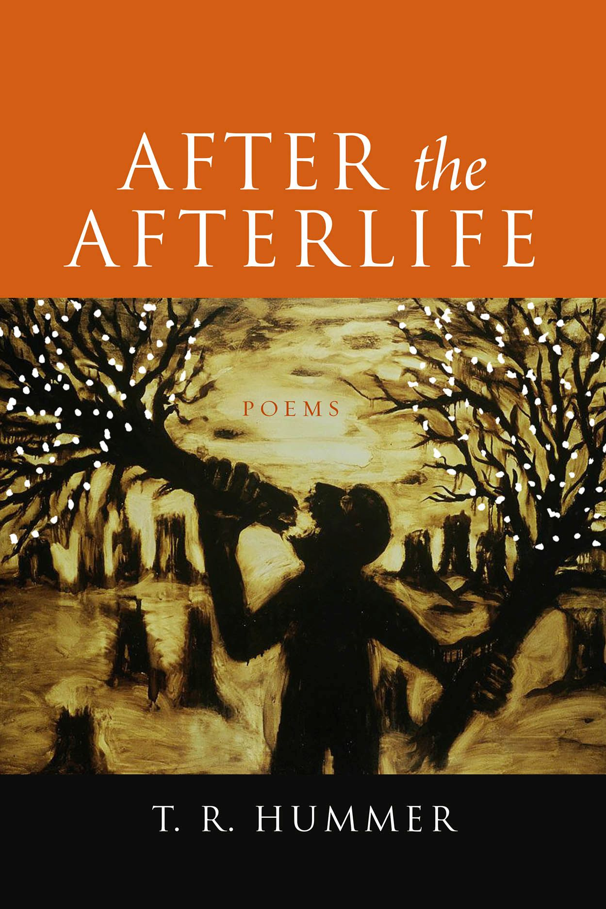 After the Afterlife: Poems