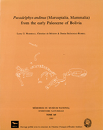 Pucadelphys andinus ( Marsupialia, Mammalia) from the early Paleocene of Bolivia