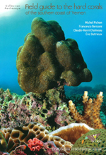 Field guide to the hard corals of the southern coa