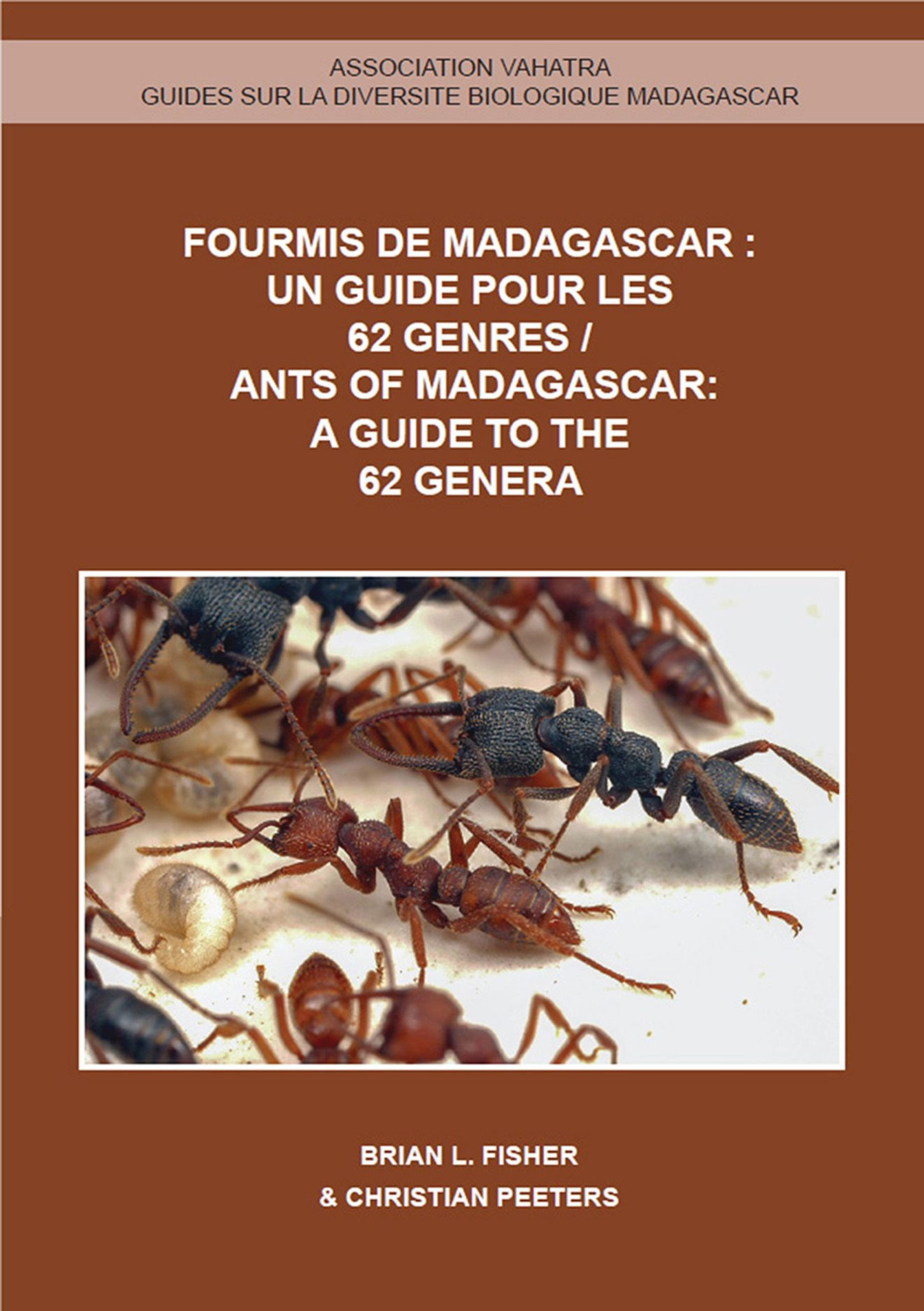 Ants of Madagascar: A Guide to the 62 Genera