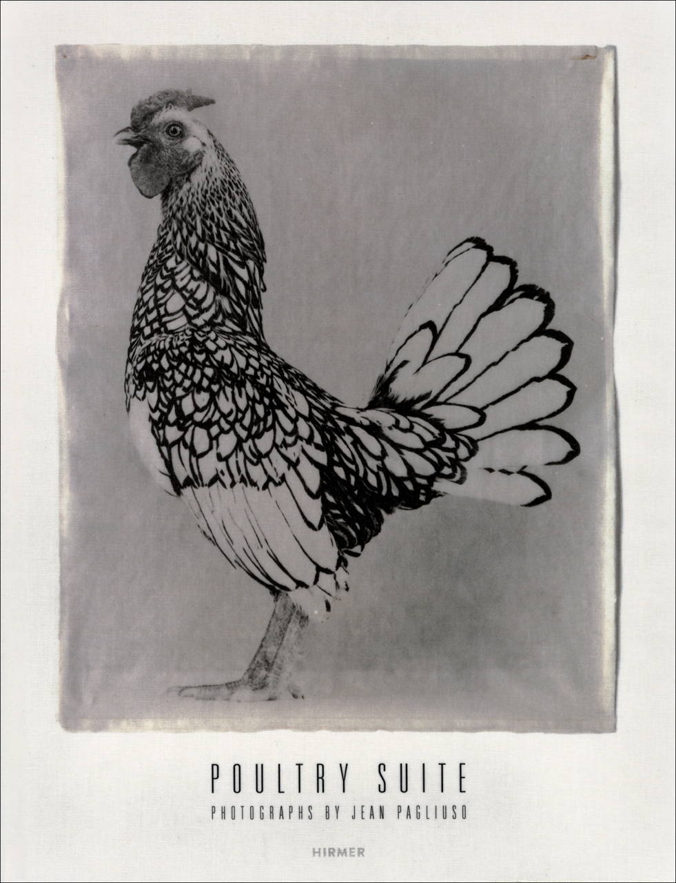 Poultry Suite: Photographs by Jean Pagliuso